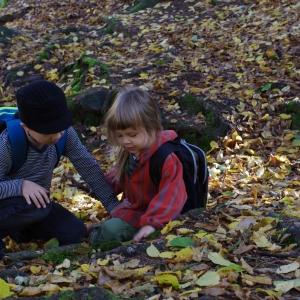 Trpaslíci v listí.
