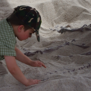 Kluci vyhrabávají zkamenělinu dinosaura.