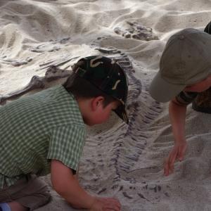V písku je zkamenělina dinosaura.