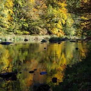 Zlatá řeka Sázava.