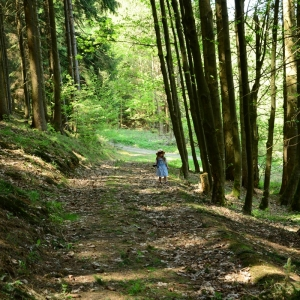 Ester ztracená v lese.
