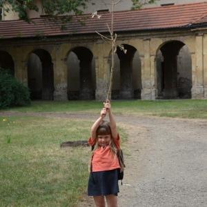 Ester a větev.