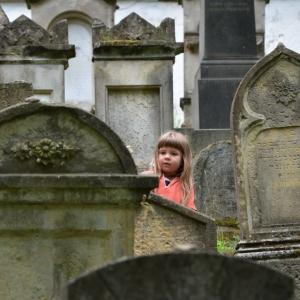 Ester na židovském hřbitově, Úštěk.