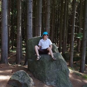 Šimon na skalním trůnu.